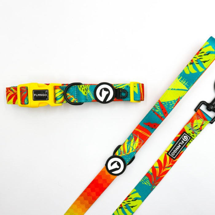 Kit collar + correa Tropical Chaos