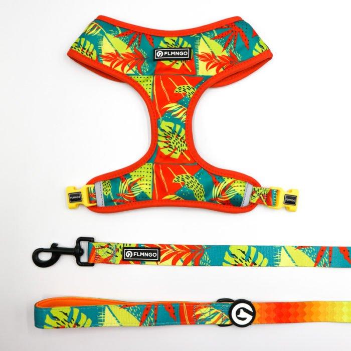 Kit pechera reversible + correa Tropical Chaos